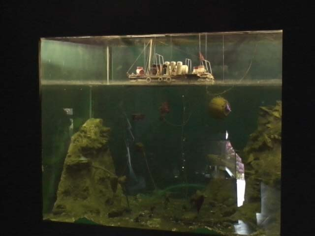 Bodrum Museum Ausgrabungen