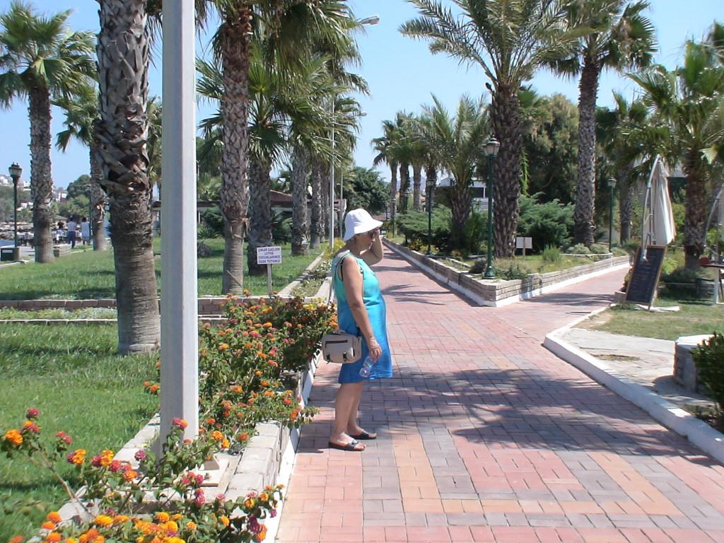 Park am Hafen